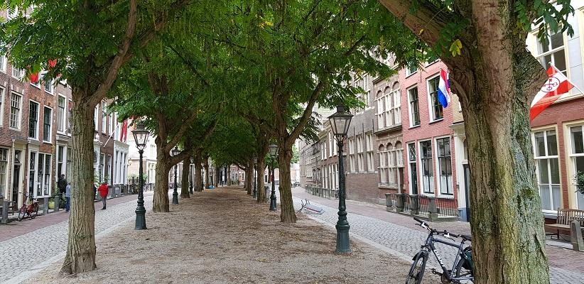 Wandelen over het Romeinse Limespad onder bomenlaan in Leiden