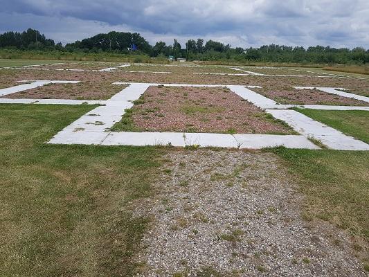 Wandelen over het Romeinse Limespad bij opgraving en reconstructie Castellum Fectio