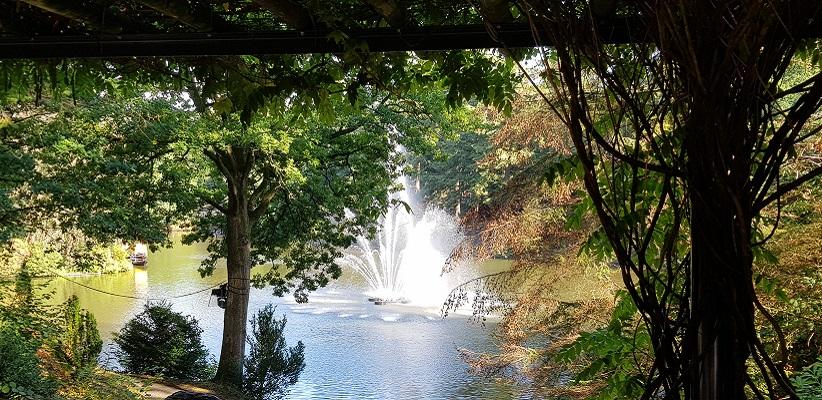 Stadspark Apeldoorn op een wandeling over het Roots Natuurpad van Apeldoorn naar Hoenderloo