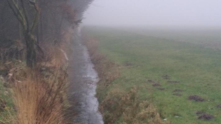 Westerwijk Biest-Houtakker op een wandeling over het Roots Natuurpad van Biest-Houtakker naar Gorp