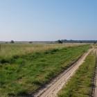 Deelense Veld op een wandeling over het Roots Natuurpad van Hoenderloo naar Schaarsbergen
