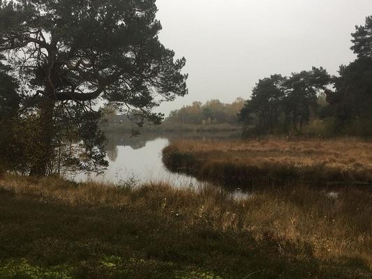 Hernensche Meer tijdens wandeling van Ravenstein naar Hernen over het Roots Natuurpad
