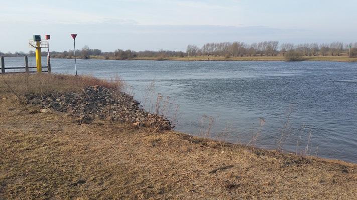 De IJssel op een wandeling over het Roots Natuurpad van Wijhe naar Heerde