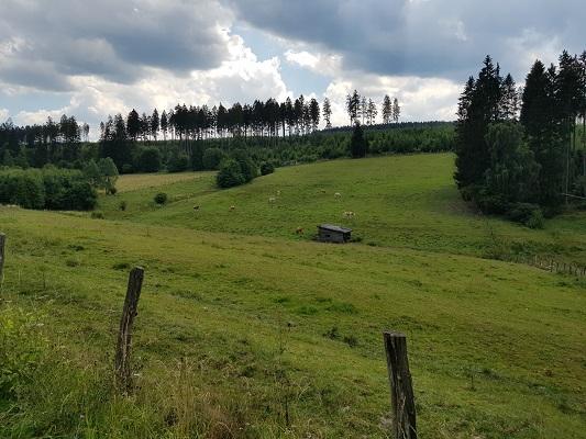 Beekdal op wandeling van Brilon naar Olsberg tijdens wandelreis over Rothaarsteige in Sauerland in Duitsland