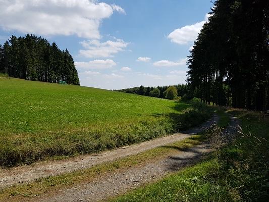 Wandelweg aan bosrand tijdens wandeling van Willingen naar Usseln op wandelreis over Rothaarsteige in Sauerland in Duitsland