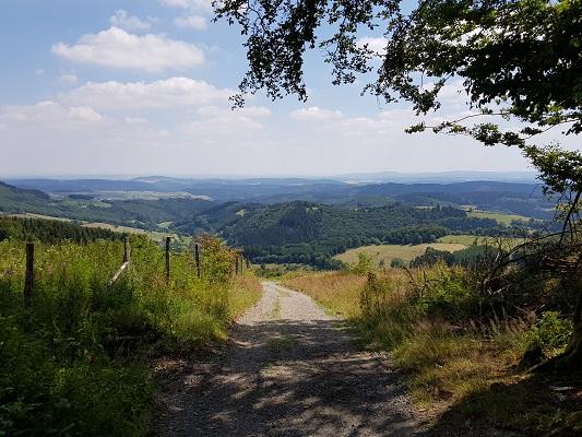 Landweg tijdens wandeling van Willingen naar Usseln op wandelreis over Rothaarsteige in Sauerland in Duitsland