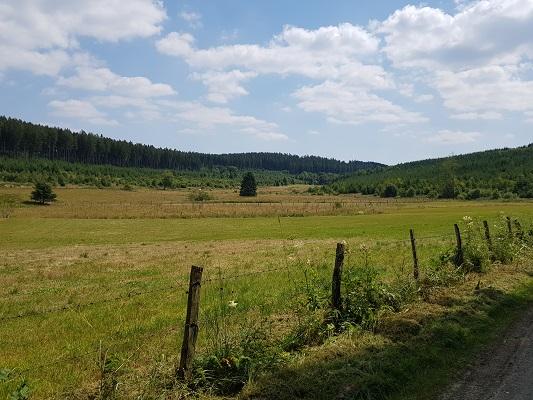 Ruhrdal tijdens wandeling naar de Ruhrquelle op wandelreis naar Rothaarsteige in Sauerland in Duitsland