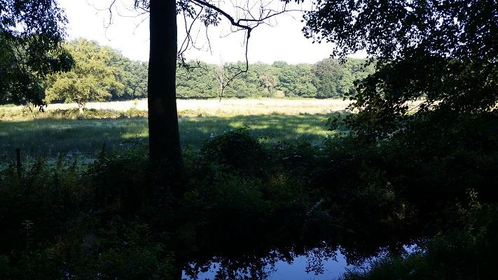 Quadenoord op een wandeling over het Veluwe Zwerfpad van Wolfheze naar Renkum