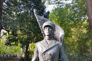 Wandelen over het Westerborkpad bij Beeld De Marinier in Baarn