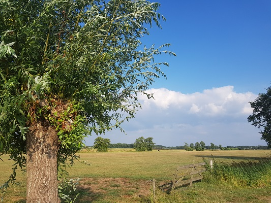 Wandelen over het Westerborkpad van 't Harde naar Elburg bij De Hoge Enk in Elburg