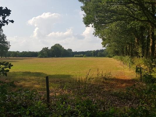 Wandelen over het Westerborkpad van 't Harde naar Elburg bij landgoed Rozenburg