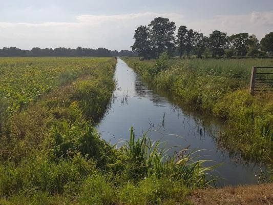 Wandelen over het Westerborkpad van 't Harde naar Elburg bij de Eekterbeek