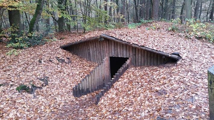 Wandelen over het Westerborkpad in het Verscholen Dorp