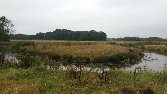 Ruiten Aa tijdens wandeling over Westerwoldepad van Wedderveer naar Vlagtwedde