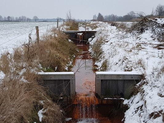 Kwelwater sloten tijdens IVN-wandeling Over Peelrandbreuk en wijstgronden in Uden