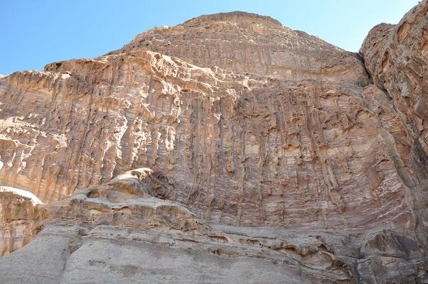 Rosen in Wadi Rum tijdens een wandelreis van SNP door Jordanië