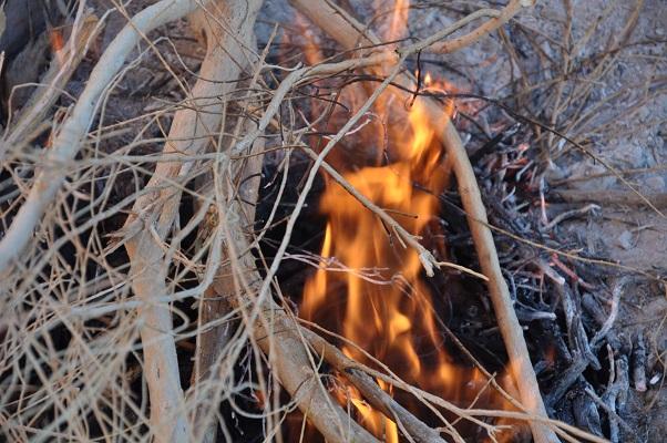 Open vuur tijdens overnachting in Wadi Rum tijdens een wandelreis van SNP door Jordanië
