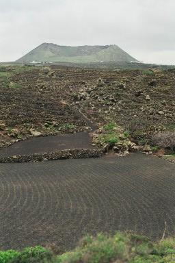 Landschap bij Haria tijdens een wandelvakantie op Canarisch Eiland Lanzarote