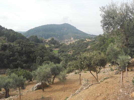 Landschap op wandeling tussen Bunyola en Alqeria op wandelvakantie in Tramuntanagebergte op Spaans eiland Mallorca