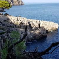 Mallorca - Deia-Port de Soller - Wandelen langs een goddelijke baai en een grillige kust