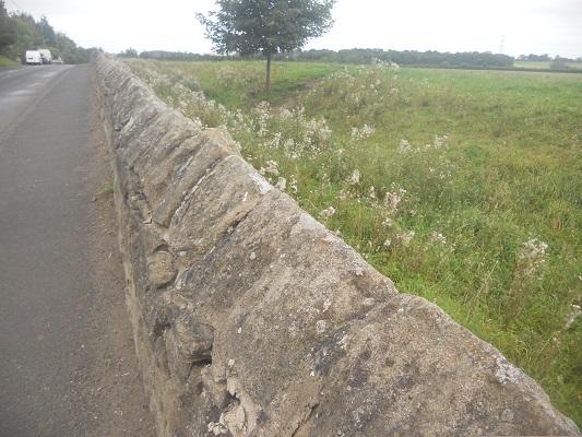 Muurresten op een wandeling van Wallsend naar Heddon on Wall op een wandelreis over de Muur van Hadrianus in Engeland