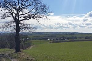 Landschap bij Remersdaal tijdens een wandeling van Rondom Zuid-Limburg, Gegarandeerd Onregelmatig, van Noorbeek naar Moresnet in België