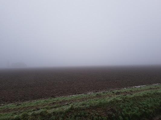 Polders bij Dintel tijdens een wandeling over het Zuiderwaterliniepad van Dinteloord naar Willemstad