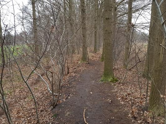 Pad over Linie Den Hout tijdens een wandeling over het Zuiderwaterliniepad van Terheijden naar Oosterhout