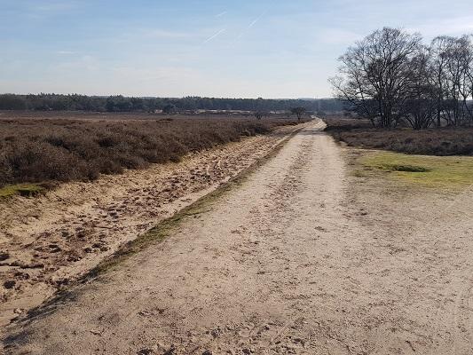 Landweg bij Zuiderheide bij Hilversum tijdens een NS-wandeling Landgoed Groeneveld van Baarn naar Hilversum