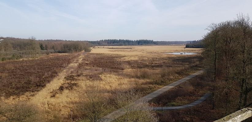 Halkenveen op wandeling over het Roots Natuurpad van Papenvoort naar Hooghalen