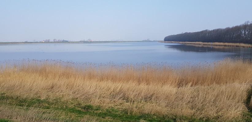 Wandelen over het Noord-Hollandpad van Nieuwesluis naar Den Oever langs de Pishoek