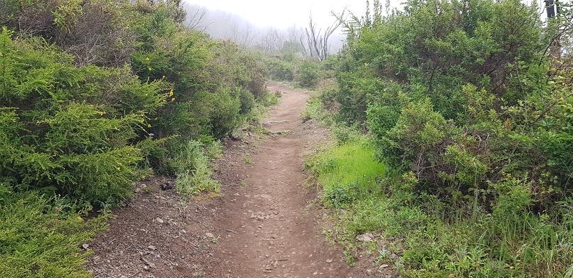 Wandeling van El Cercado naar Chipude via Laguna Grande op Canarisch Eiland La Gomera