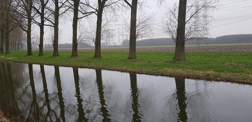 Kromgat op een wandeling over de Zuiderwaterlinie van Oosterhout via Geertruidenberg naar Hooipolder