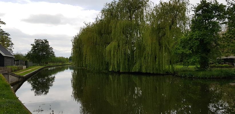 Wandelen van Harmelen naar Woerden over het Romeinse Limespad bij treurwilg langs Oude Rijn