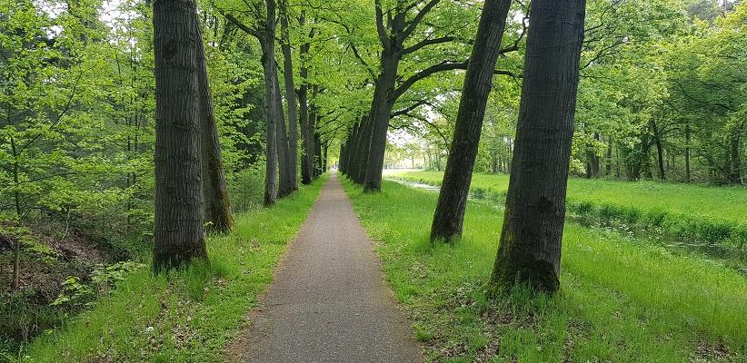 Wandeling over het Achterhoekpad van Westendorp naar boekenstadje Bredevoort bij bomenlaan langs de Boven-Slinge