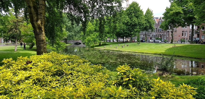 NS-wandeling Rotterdam Maasstad door de singels