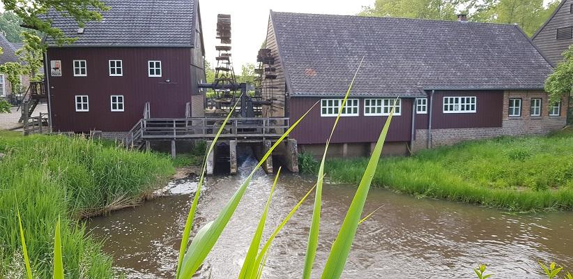 Wandelen buiten de binnenstad van Eindhoven over het Tongelrepad bij de Opwettense watermolen