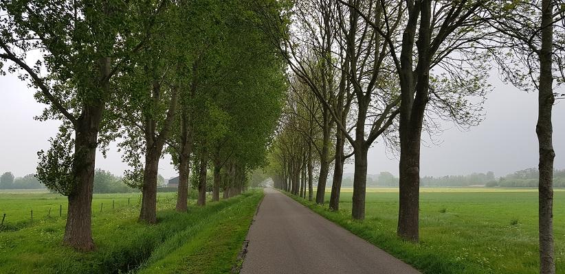 Wandeling over het vernieuwde Waterliniepad van Woudrichem via voetveer naar Slot Loevestein