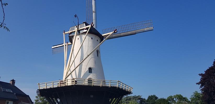 Wandeling met de gids van Gegarandeerd Onregelmatig Buiten de binnenstad van Nijmegen over het Wijchenpad en kom langs de Witte Molen