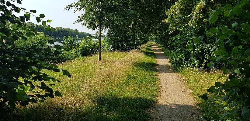 Ik maak een wandeling met de gids van Gegarandeerd Onregelmatig Buiten de binnenstad van Nijmegen over het Wijchenpad langs het Maas-Waalkanaal