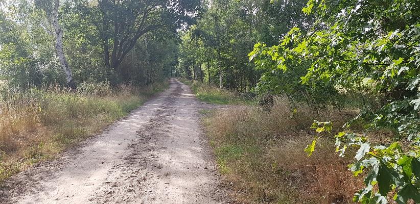 Wandelen over het Achterhoekpad van Groenlo naar Borculo richting Hupsell