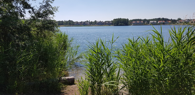 Wandeling over het Airbornepad van Kempervennen naar Genneper Park in EIndhoven langs de plas van Waalre