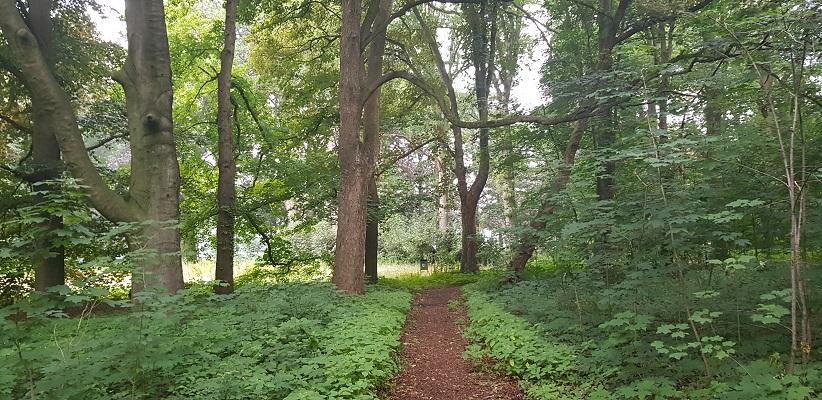 Wandeling NS-wandeling Spoorzone Tilburg