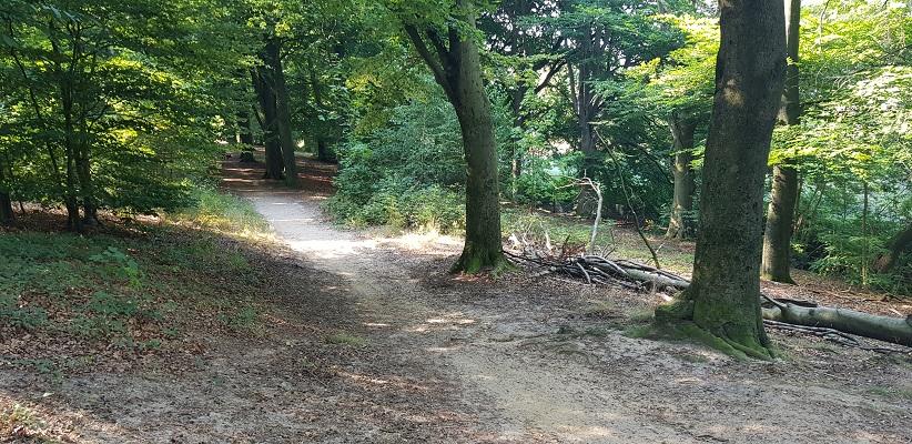 Wandelen over trage tocht Velp
