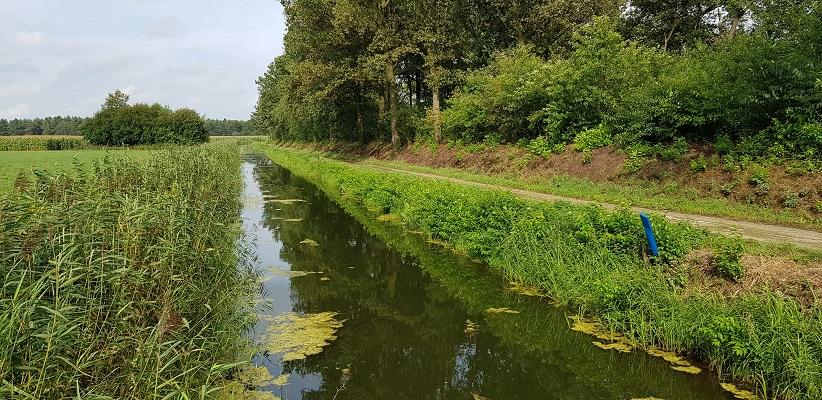 IVN-wandeling bij Landhorst over Waterweetjes langs Defensiekanaal