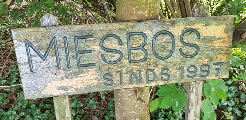 IVN-wandeling Liekendonk in Heeswijk-Dinther in het Miesbos
