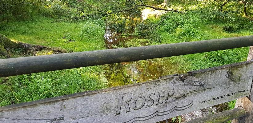 Wandeling over het Roots Natuurpad van Oisterwijk bij het riviertje de Rosep