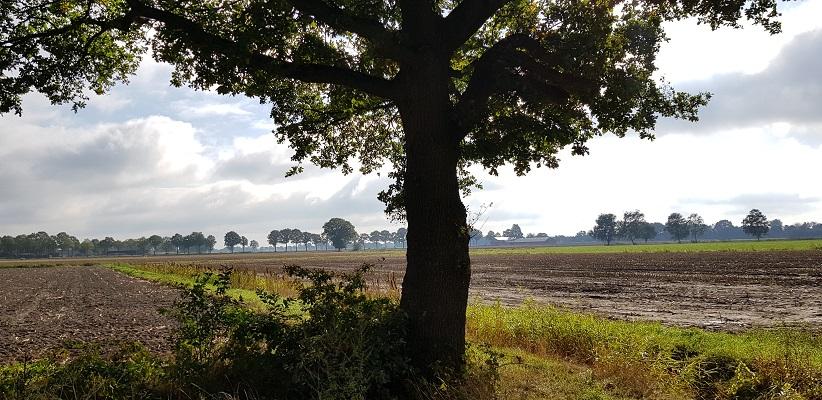 Landschap bij Bakel tijdens wandeling Heemkundekring Bakel