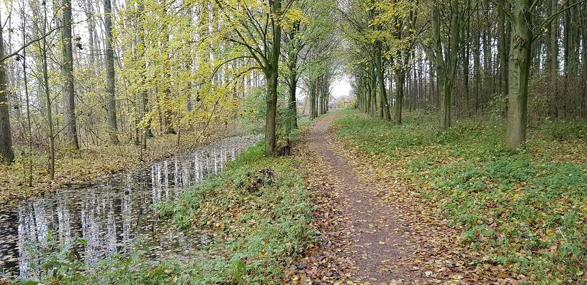 Wandeling over het Elfstedenpad van Witmarsum naar Allingawier in het Flietserbosk