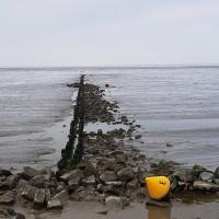Friese Woudenpad - Lauwersoog-Ezumazijl - Langs het Lauwersmeer